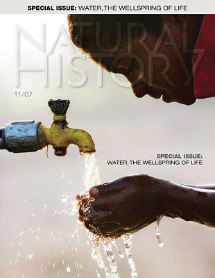 Photograph - Boy Drinking Water by Tim Gainey