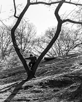 Photograph - Boy In Tree by Alan Raasch