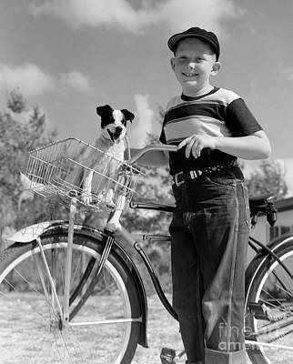 Pet Care Photograph - Boy On Bike With Puppy In Basket by C.S. Bauer/ClassicStock