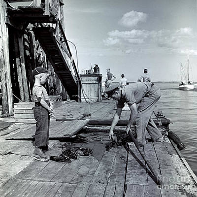 Photograph - Boy Watching Fisherman Unload Lobsters by H Armstrong Roberts and ClassicStock