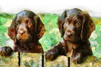 Boykin Spaniel Painting - Boykin Buddies by Laurence Canter