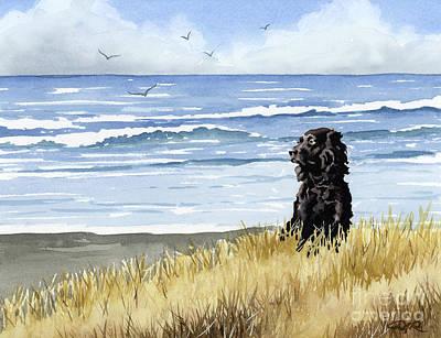 Boykin Spaniel Painting - Boykin Spaniel At The Beach by David Rogers