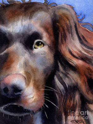 Boykin Spaniel Painting - Boykin Spaniel by David Rogers