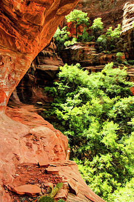 Boynton Canyon Photograph - Boynton 04-631 by Scott McAllister
