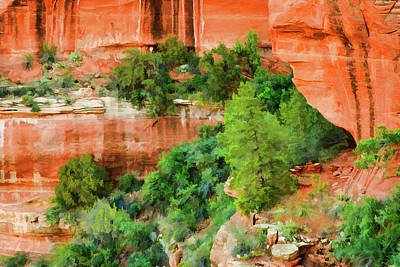 Boynton Canyon Photograph - Boynton Canyon 07-107 by Scott McAllister