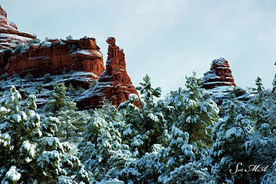 Photograph - Boynton Snow 09-015 by Scott McAllister