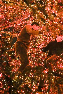 Photograph - Boys In The Christmas Tree 1 by Bonnie Follett