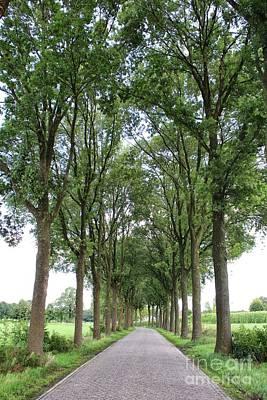 Photograph - Brabant Road by Carol Groenen