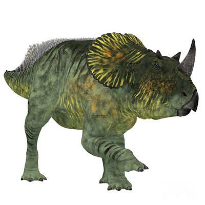 Montana Digital Art - Brachyceratops Dinosaur On White by Corey Ford