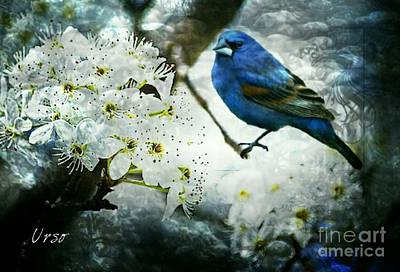 Digital Art - Bradford Blue Bird by Maria Urso