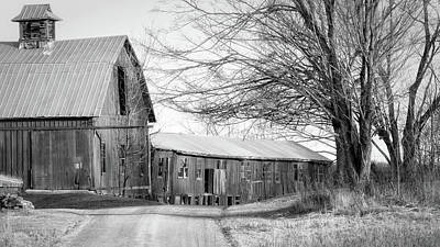 Photograph - Bradford County Road by Frank Morales Jr