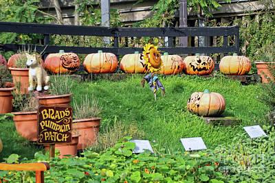 Photograph - Brads Pumpkin Patch Art by Doc Braham