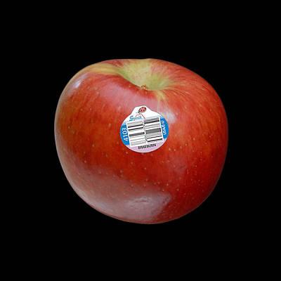 Photograph - Braeburn Apple by Stan  Magnan