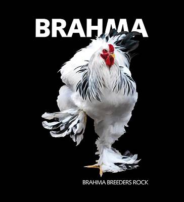 Digital Art - Brahma Breeders Rock T-shirt Print by Sigrid Van Dort