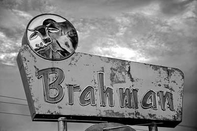 Photograph - Brahman Bull Sign Bw Work C by David Lee Thompson
