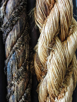 Photograph - Braids Of Rope by Tony Grider