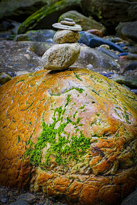 Photograph - Brain Rock by Vance Bell