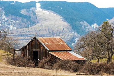 Photograph - Bramble Bound Barn by Tom Cochran