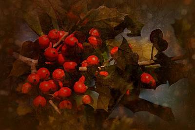 Photograph - Branch Of Berries by Angie Tirado