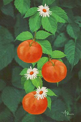 Tangerines Mixed Media - Branch Of Mandarin Orange by Angeles M Pomata