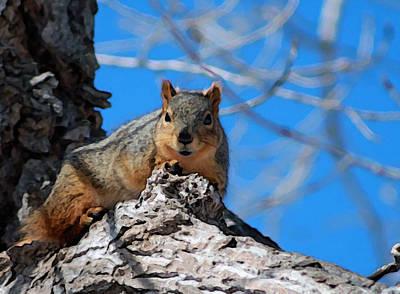 Painting - Branch Squirrel by Dennis Buckman