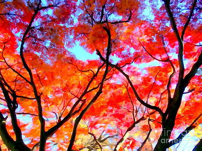 Photograph - Branches Of Fire by Ed Weidman