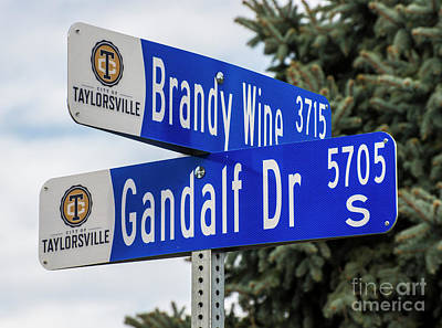 Brandywine And Gandalf Street Signs Art Print by Gary Whitton