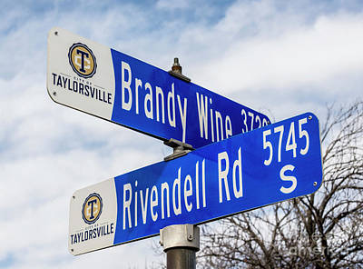 Brandywine And Rivendell Street Signs Art Print by Gary Whitton