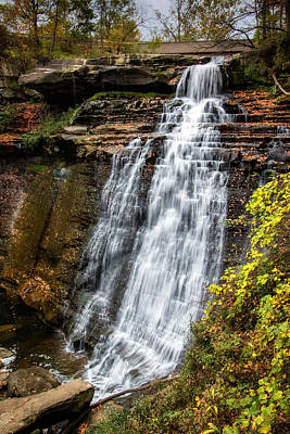Brandywine Falls Art Print by Tom Mc Nemar