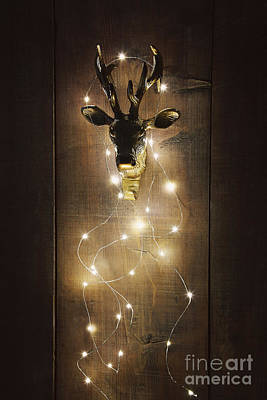 Photograph - Brass Deer Head With Christmas Lights by Sandra Cunningham