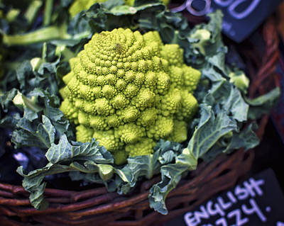 Photograph - Brassica Oleracea by Heather Applegate