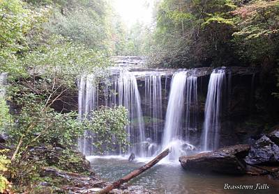 Brasstown Falls Art Print by Lane Owen