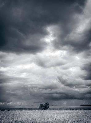 Photograph - Bravery by Sandra Parlow