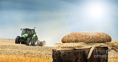Photograph - Bread And Wheat Cereal Crops.traktor On The Background by Deyan Georgiev