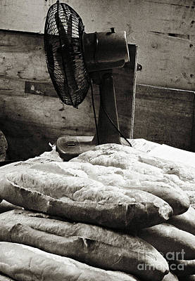 Photograph - Bread					 by Ethna Gillespie
