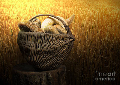 Photograph - Breads And Wheat Cereal Crops by Deyan Georgiev