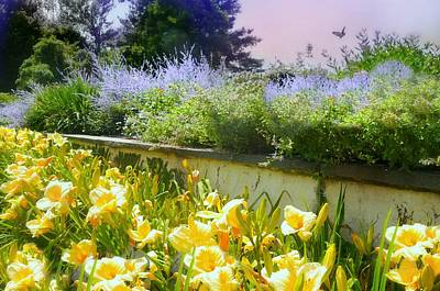 Photograph - Breadth Of Summer by Diana Angstadt