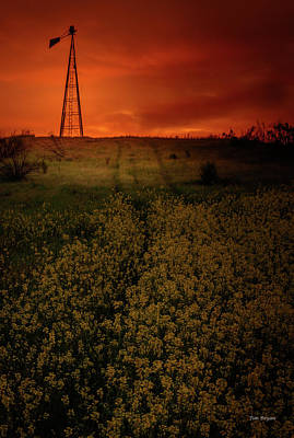 Photograph - Break Of Dawn by Tim Bryan