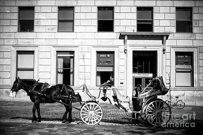 Photograph - Break Time At Place D'armes by John Rizzuto