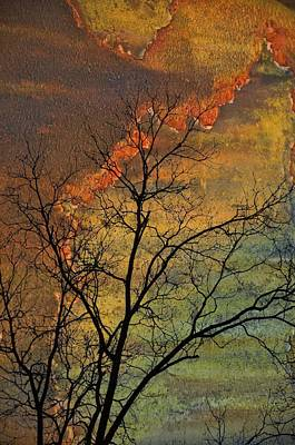 Photograph - Breaking On The Daylight by Jan Amiss Photography