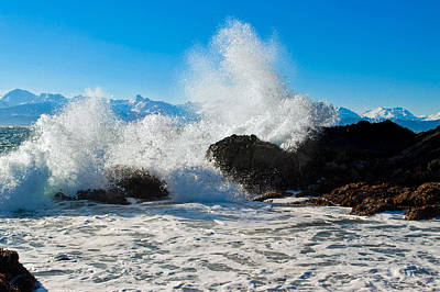 Photograph - Breaking Wave by Cathy Mahnke