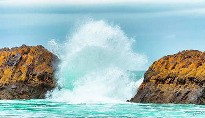 Photograph - Breaking Wave by Dee Browning