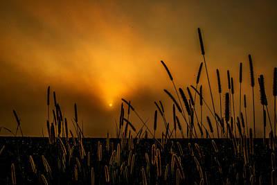 Photograph - Breakthrough by John Harding