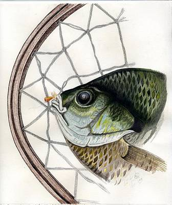 Bream And Net Art Print by H C Denney