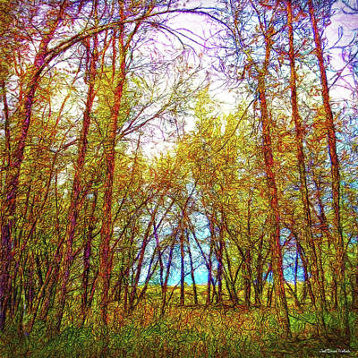 Digital Art - Breath Of Forest Light by Joel Bruce Wallach