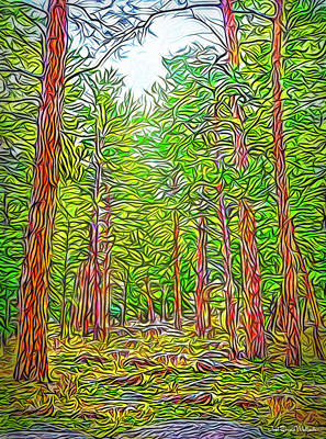 Digital Art - Breath Of Pine by Joel Bruce Wallach