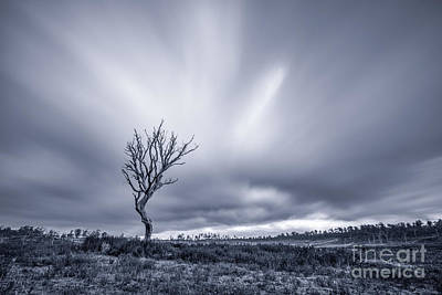 Photograph - Breathless Solitude by Evelina Kremsdorf