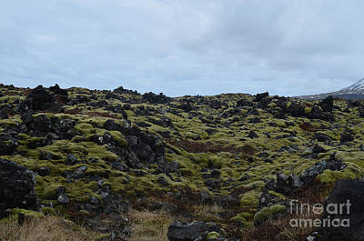 Photograph - Breathtaking View Of A Lava Field In Iceland  by DejaVu Designs