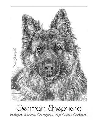 Digital Art - Breed Poster German Shepherd by Tim Wemple