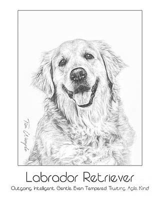 Digital Art - Breed Poster Labrador Retriever by Tim Wemple